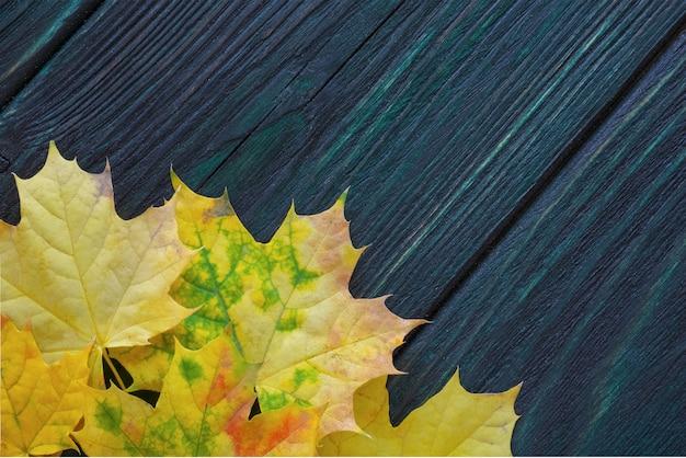 Kolor żółty, jesień, liście klonu na drewnianym tle. widok z góry. szablon reklamy, sprzedaż sezonowa.