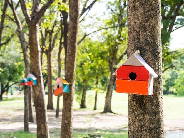 Kolorowe domy ptaków w parku wiszące na drzewie