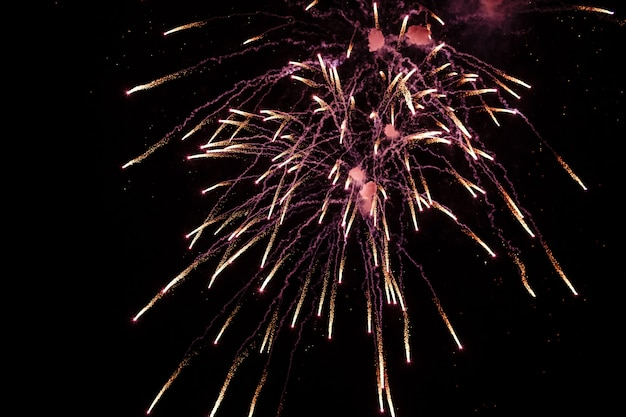 Kolorowe fajerwerki na festiwalu deep black sky on fireworks