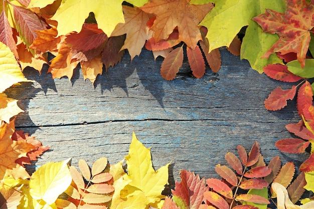 Kolorowe jesienne liście na powierzchni drewnianych