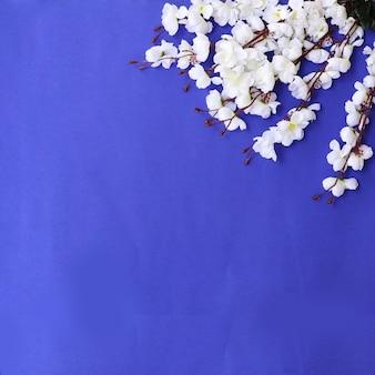 Kolorowe kwiaty tło