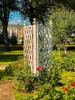 Kolorowe kwiaty w ogrodach kremla.