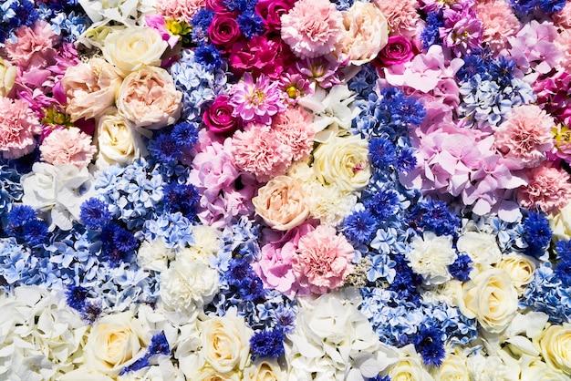 Kolorowe kwiaty w tle. koncepcja lato. widok z góry