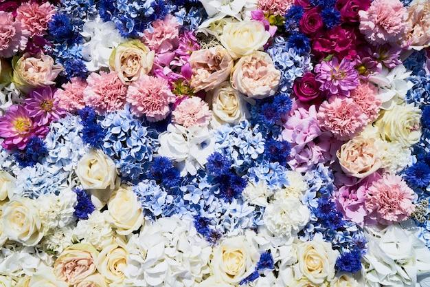 Kolorowe kwiaty w tle. widok z góry.