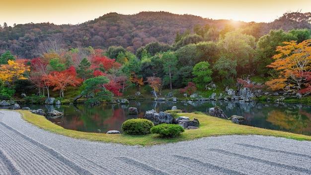 Kolorowe liście w jesiennym parku, japonia.