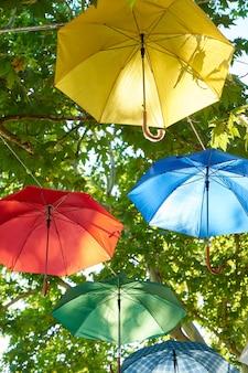 Kolorowe parasol zwisające z drzew