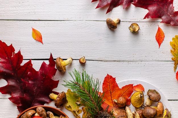 Kolorowe tło jesień. jadalne tłuste pieczarki na białym drewnianym tle dekorującym z spadać liśćmi