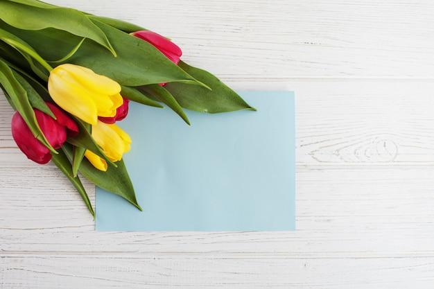 Kolorowe tulipany i białe tło. koncepcja gratuluje