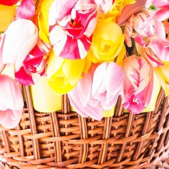 Kolorowe tulipany w koszu na zbliżenie