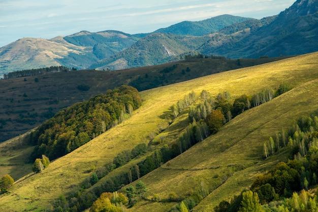 Kolorowe ujęcie doliny ponor, alba, apuseni, karpat