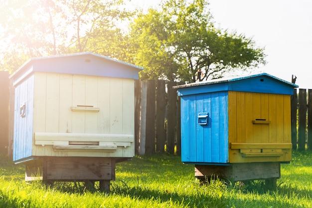 Kolorowe ule w pasiece w ogrodzie w ciepły słoneczny dzień. zdjęcie stockowe