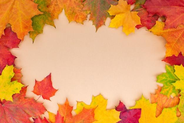 Kolorowe wielobarwne jesienne liście klonu ramki. jesienne tło.