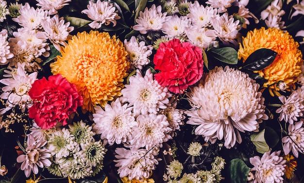 Kolorowego kwiatu wiosny natury tapety świeży tło