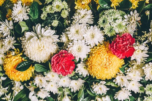 Kolorowego tropikalnego kwiatu wiosny natury tapety świeży tło