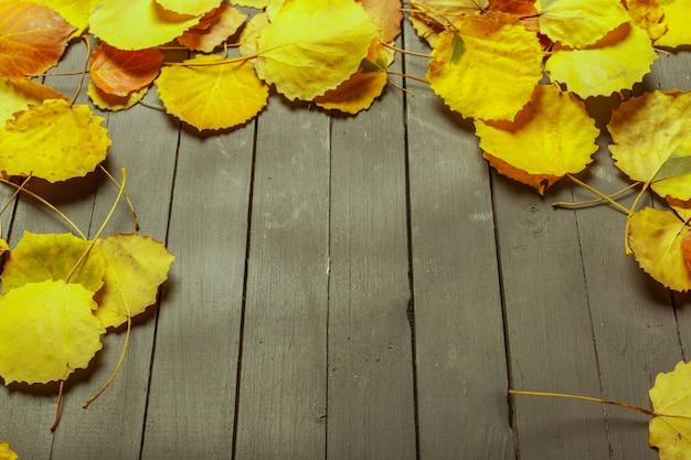 Kolorowi jesień liście nad drewno powierzchnią z kopii przestrzenią