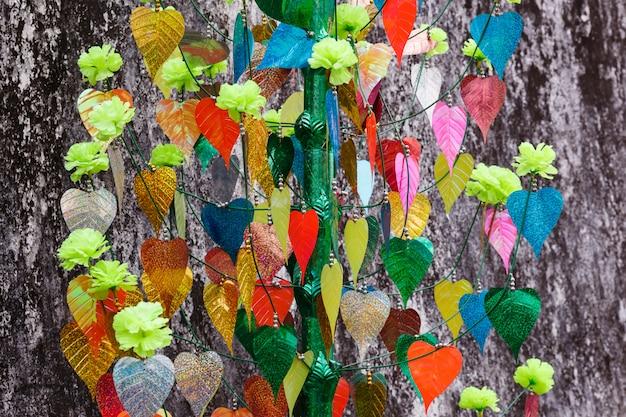 Kolorowi liście bodhi drzewo