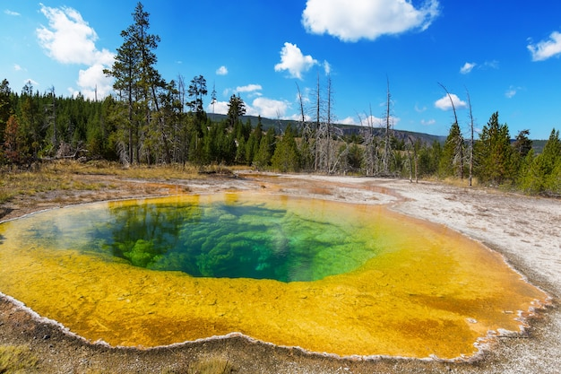 Kolorowy basen morning glory - słynne gorące źródło w parku narodowym yellowstone, wyoming, usa