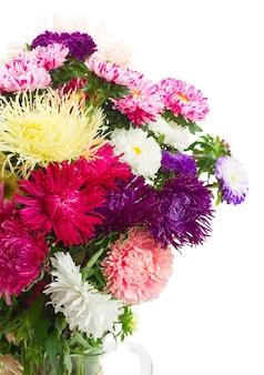 Kolorowy bukiet kwiatów aster w szklanym wazonie z bliska na białym tle