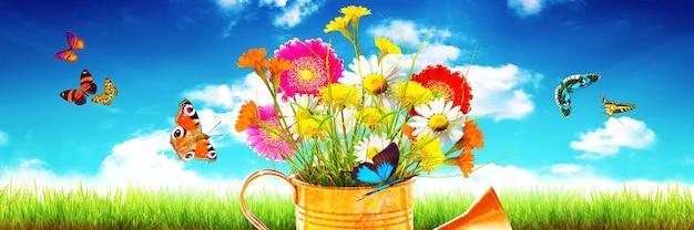 Kolorowy bukiet kwiatów w konewce z motylami na trawie na tle błękitnego nieba