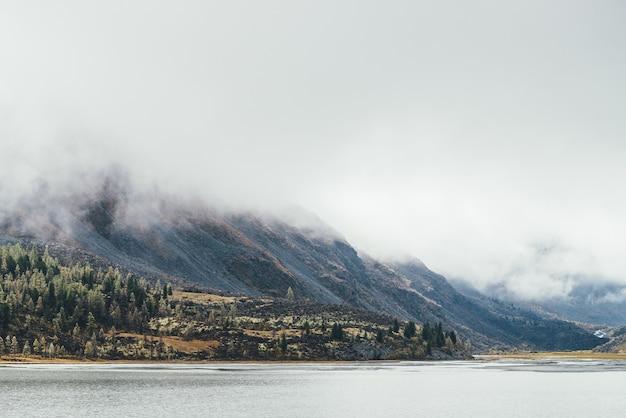 Kolorowy jesienny krajobraz z drzewami iglastymi z szronem na omszałym wzgórzu w pobliżu górskiego jeziora w niskich chmurach. piękne drzewa z szronem na zboczu wzgórza w pobliżu jeziora i wysokiej skalistej góry w niskich chmurach.