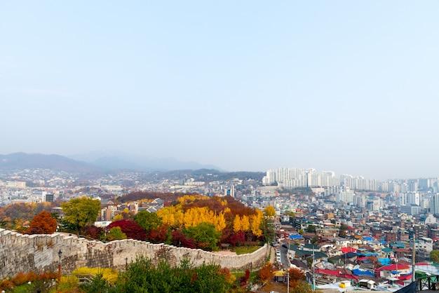 Kolorowy jesienny liść w parku namsan z widokiem na miasto seul. seul, korea południowa.