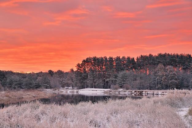 Kolorowy jesienny świt. czerwone niebo i chmury. pierwszy śnieg w jesiennym lesie.