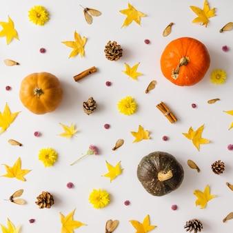 Kolorowy jesienny wzór wykonany z dyni, liści i kwiatów.