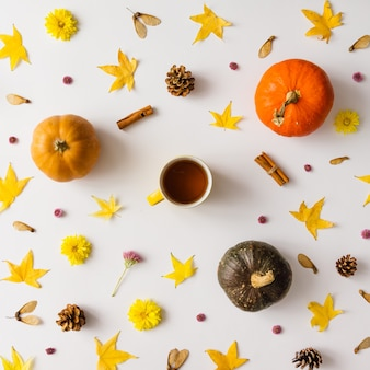 Kolorowy jesienny wzór z dyni, liści i kwiatów z filiżanką kawy lub herbaty.