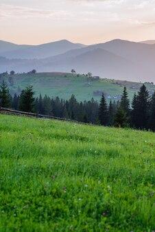 Kolorowy krajobraz lato