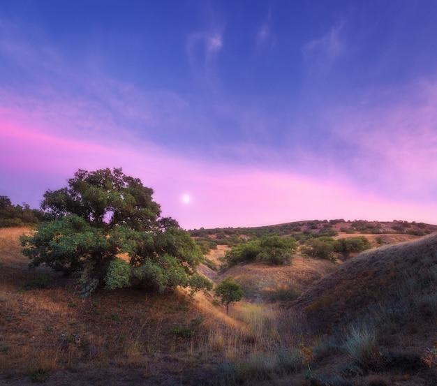 Kolorowy noc krajobraz z zielonym drzewem na wzgórzu