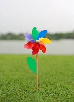 Kolorowy pinwheel na zielonej trawie