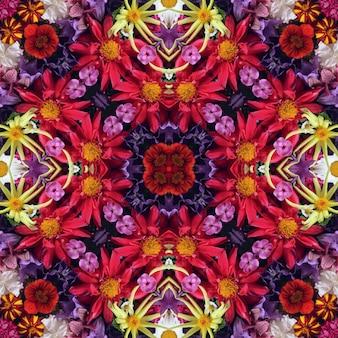 Kolorowy tło z ogrodowymi kwiatami, odgórny widok. róża i dalia, rumianek i piwonie