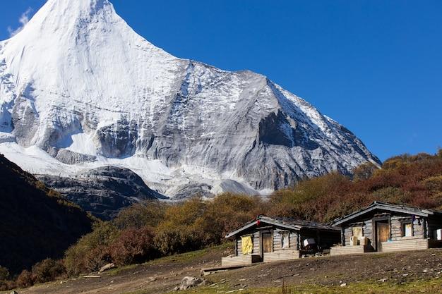 Kolorowy w jesień lesie i śniegu w rezerwacie przyrody yading, ostatni la la shangri