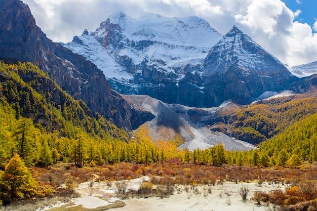 Kolorowy w jesień lesie i śnieżnej górze