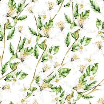 Kolorowy wzór akwarela z owocami i kwiatami cytryny. ilustracje.