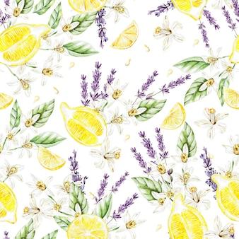 Kolorowy wzór akwarela z owocami i kwiatami cytryny, lawenda. ilustracje.