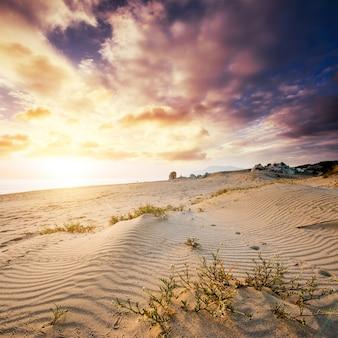 Kolorowy zachód słońca nad tajemniczą pustynią