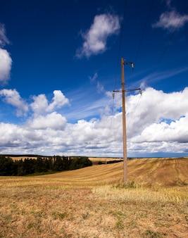 Kolumny elektryczne stojące na polu uprawnym