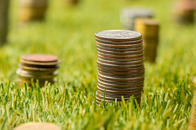 Kolumny monet na trawie