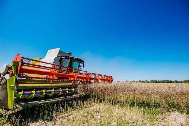 Kombajn do zbioru plonów w polu pszenicy