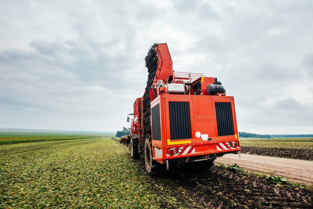 Kombajn do ziemniaków i traktor