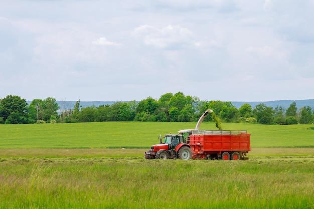 Kombajn zbiera świeżo skoszoną trawę w przyczepie ciągnika do transportu.