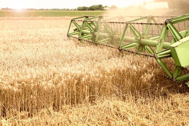 Kombajn zbożowy pracujący w polu pszenicy