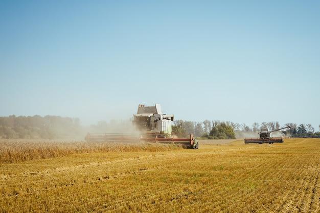 Kombajn Zbożowy Zbiera Dojrzałą Pszenicę O Bogatym Obrazie Rolnictwa Premium Zdjęcia