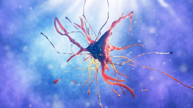 Komórka nerwowa