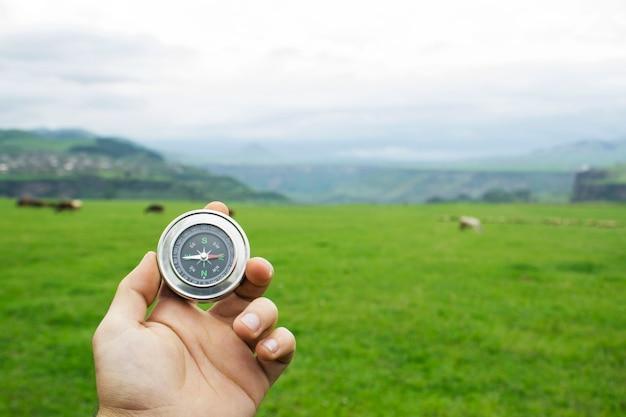 Kompas na scenie zielonego pola i krów w ciągu dnia