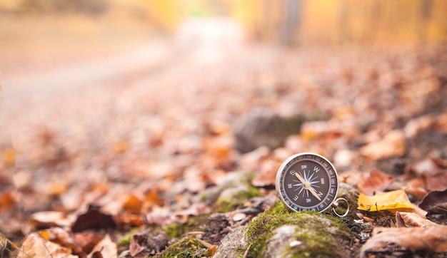 Kompas w jesiennych liściach. las