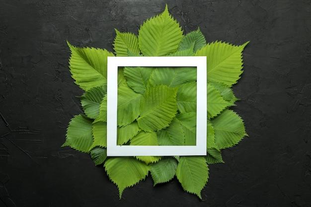 Kompozycja abstrakcyjna lato. ramka tekstu z pięknych zielonych liści na betonowym czarnym tle. widok z góry.