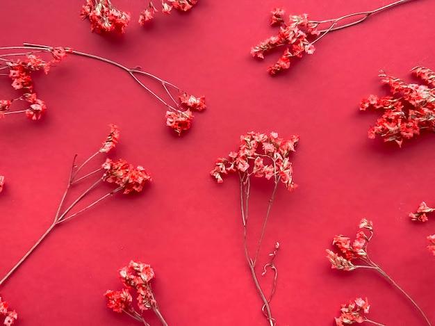 Kompozycja kwiatów. czerwone kwiaty na czerwonym tle. koncepcja wiosna, lato. mieszkanie świeckich, kopia przestrzeń.