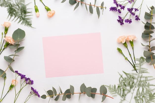 Kompozycja kwiatów. czysty papier, kwiaty goździków, gałęzie eukaliptusa na pastelowym tle. płaski leżał, widok z góry, miejsce na kopię
